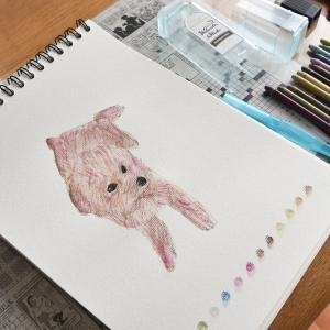お金のかからない遊び…絵を描く!水彩スティックが届きました