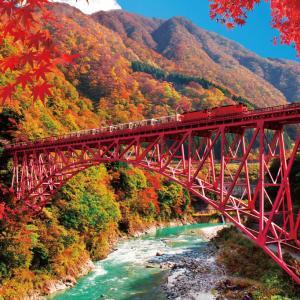 車窓からの眺めが美しすぎる、日本全国「絶景紅葉列車」