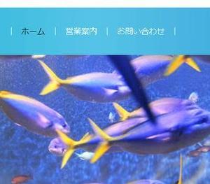 本「ちゃんとしたプロになるWebデザイン基礎入門」を読みました。