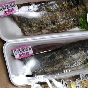 カツオは「タタキ」〜〜〜!!
