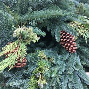 もみの木の香りでクリスマスを感じる