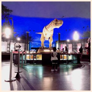 カニ、東尋坊、恐竜を、複合母子旅で楽しむ♡in福井県①