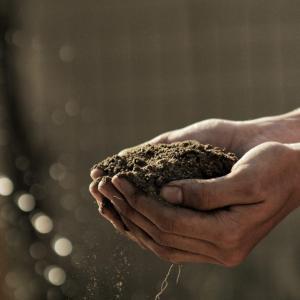 【土壌は母なる大地、腸は生命の源】