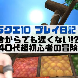 【ドラクエ10 プレイ日記 ①】今からでも遅くない!? 40代超初心者の冒険