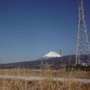 2003年2月 愛鷹林道 By ヤマハ テネレー660