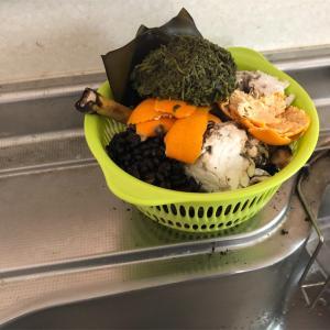 生ゴミ堆肥化・実験 その4 課題山積