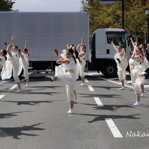 第17回京都学生祭典 2019.10.13