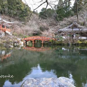 醍醐寺  2020.2.23