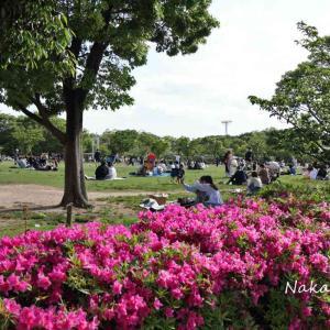 梅小路公園 2021.5.3