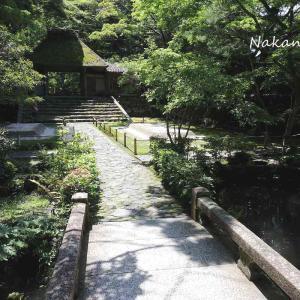 八神社と法然院  2021.5.23