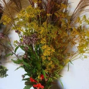 秋の野の花