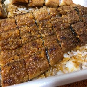 三河一色産伊勢神宮外宮奉納活うなぎ うなぎのしろむらの三河一色産活鰻の炭焼き弁当が美味しい!