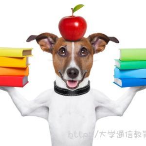 【北海道】司書講習・司書補講習を実施している大学。社会人におすすめはココ!