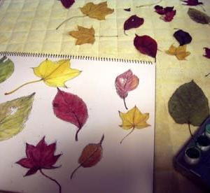 木の葉の宴