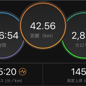 横浜マラソン 速報