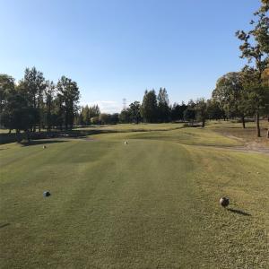 ゴルフと8km
