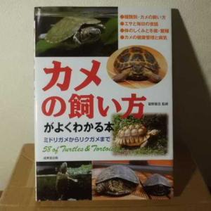 カメの飼い方がよくわかる本、入手しました