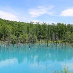 青い池(北海道美瑛町)で青いソフトクリーム