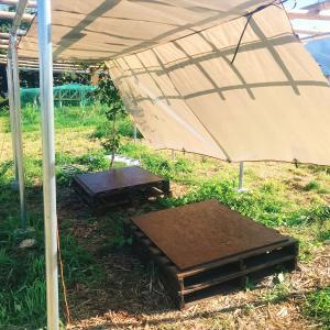 農園ガーデンベンチを作る vol272
