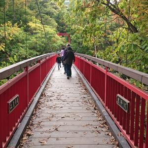 紅葉を求めて!秋の定山渓 二見吊り橋