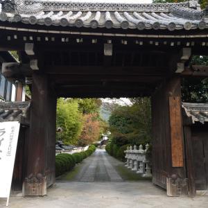 小野小町ゆかりの寺 随心院