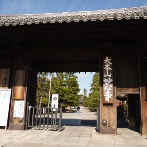 妙心寺 京の冬特別公開中
