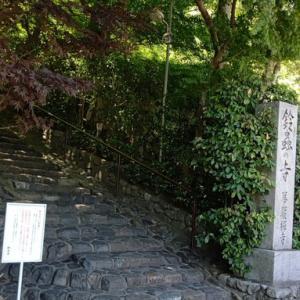 1年中鈴虫の鳴く鈴虫寺~妙徳山華厳寺