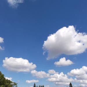 青い空に白い雲、自転車散歩でやる気が出て来ました!