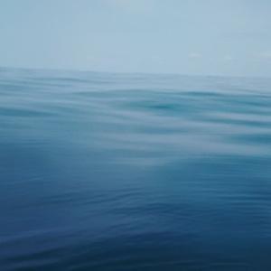 4月11日釣行 べったべたの凪 真鯛は・・・