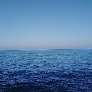 5月28日釣行 べた凪の海から引きずり出す