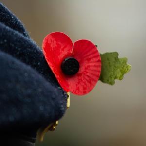 イギリスの行事 一次大戦終結日とポピーの花