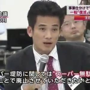 【スーパー堤防】蓮舫さん(二重国籍/当時)「現実的な話だと本当にお考えですか?」⇒関東全滅