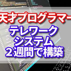 日本の天才プログラマーが作った無償提供中のシン・テレワークシステムのSSL-VPN接続が素晴らしい!