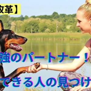【意識改革】最強のパートナー!信頼できる人の見つけ方!