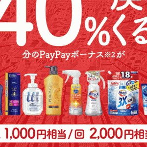 PayPayで花王製品を5,000円分購入