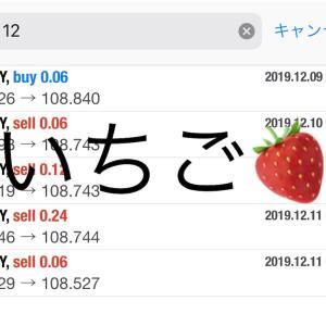 12月11日FXEA自動売買ソフト収益