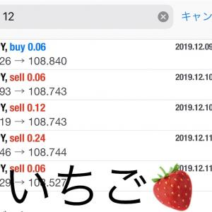 12月12日FXEA自動売買ソフト収益