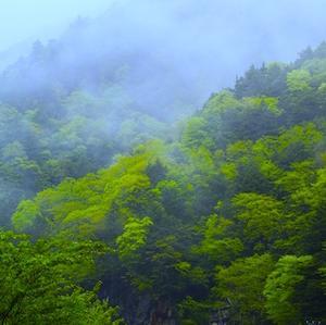 今夏(7・8月)の山岳遭難状況が判明。愛知県でも3名が遭難。