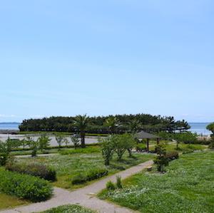 名古屋ランニングコースガイドvol.130「一色漁港周辺(西尾市)」。