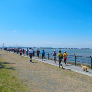 名古屋市内では貴重な海沿いランスポット「藤前干潟」に新コース誕生。