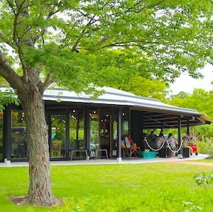小幡緑地の新アウトドア施設「オバッタベッタ」を視察ラン。