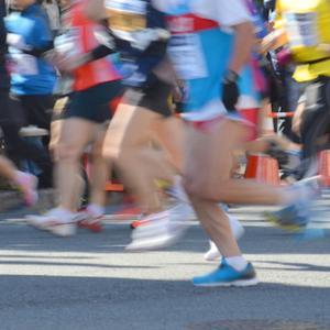 予算計上されず…「豊橋フルマラソン」開催断念か。