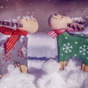 【困っちゃうな】雪玉問題【犬の冬散歩】