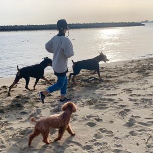 海にお散歩(^^)