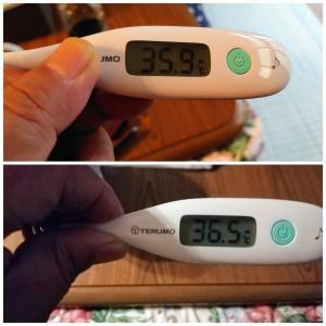 母の発熱は落ち着きました。