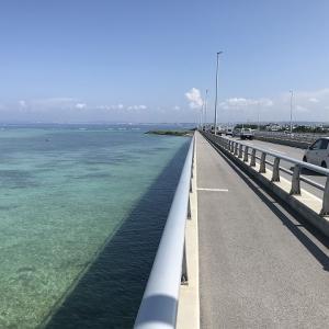 沖縄自転車通勤 西海岸道路 ランチマップ「居酒屋 柚子」