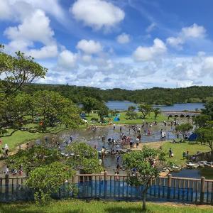 沖縄ロードバイク 水場巡り