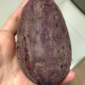 [マニラ離乳食日記]紫芋とBGCのマーケットについて