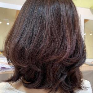 髪にエステ    してみませんか??髪質改善エステカラー