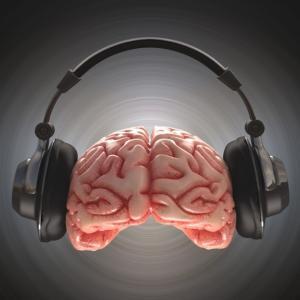NO music 脳Life